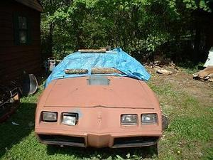 Here is a pic of my car back in Tenn after its 9 month vacation to Panama City were it sat in my mothers yard. What you can't see is the car has no windows or interior.